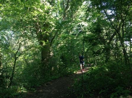 Vrijdag training in het bos